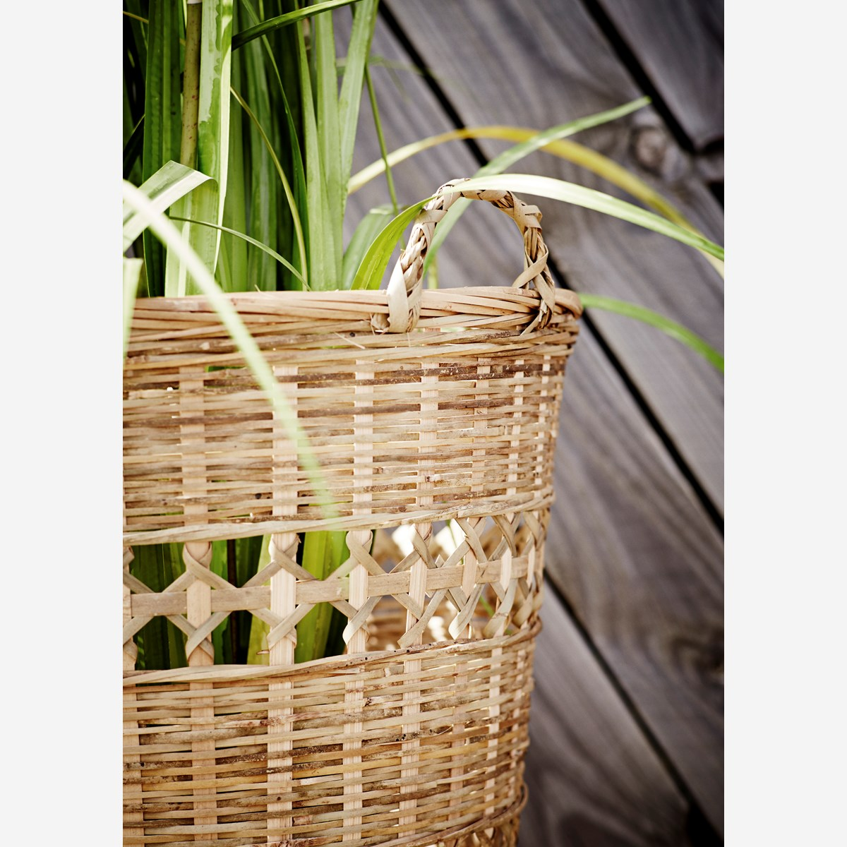Bamboo basket w/ handle