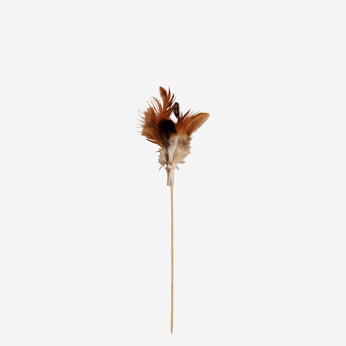 Feathers on stick