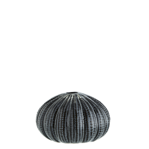 Sea urchins vase