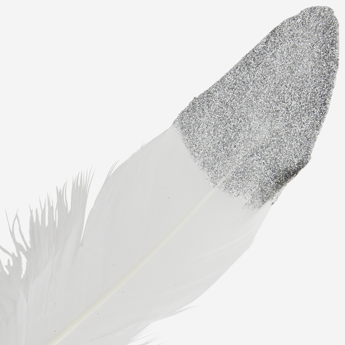 Two tone goose feathers