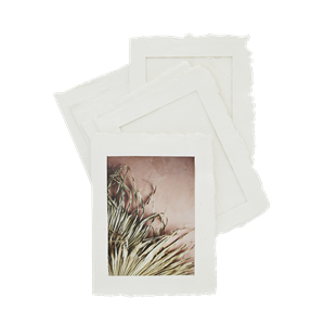 Paper pulp photo frames