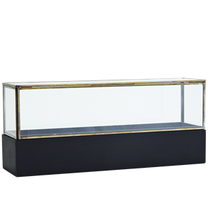 Glass box w/ wooden base