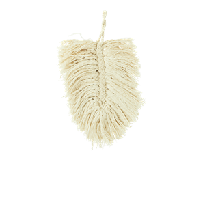 Cotton leaf